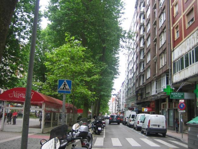 calle-vargas